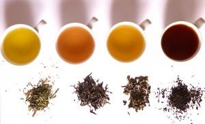 herbaty - różne rodzaje